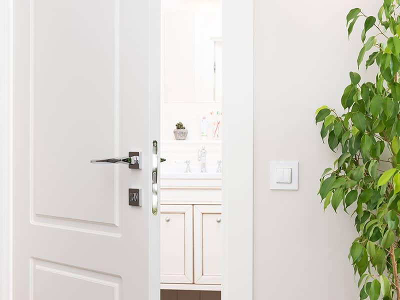 Door Bathroom Series Switch