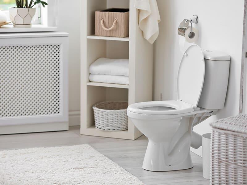 Toilet Bowl Modern